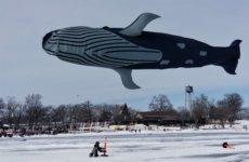 6th Annual Sky Circus On Ice